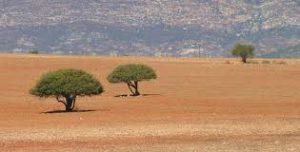 land reform2