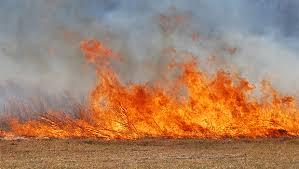 AGRI NK - Farm Fire