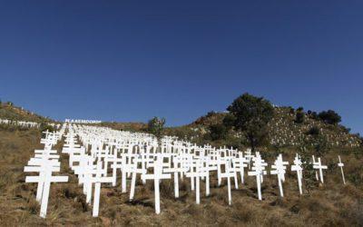Remembering the farmers who died trying to feed SA News24 - Amanda Khoza