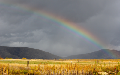 Uncertain weather prospects for SA's summer rainfall region Farmer's Weekly - Annelie Coleman