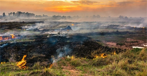 Agri Noord Kaap - Farmers must plan for veld fire risk during dry winter months
