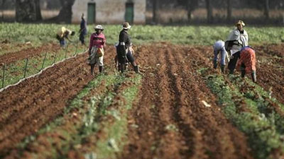 Agri Noord Kaap - Agri SA appeal to public sector for drought relief