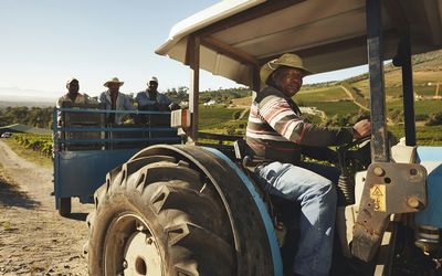 Agri Noord Kaap - Mobile operators help African farmers with advice and managing their admin