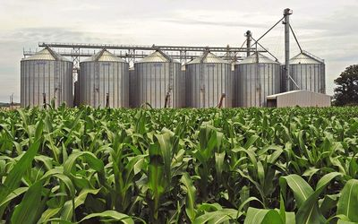 Agri Noord Kaap - SA maize industry must prioritise access to top 25 most attractive markets