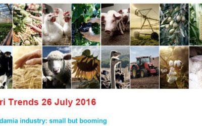 Macadamia industry: small but booming ABSA