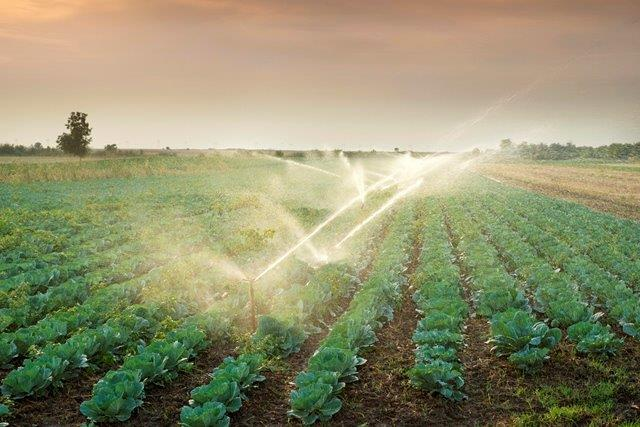 Maximising the potential of wastewater in agriculture Bizcommunity