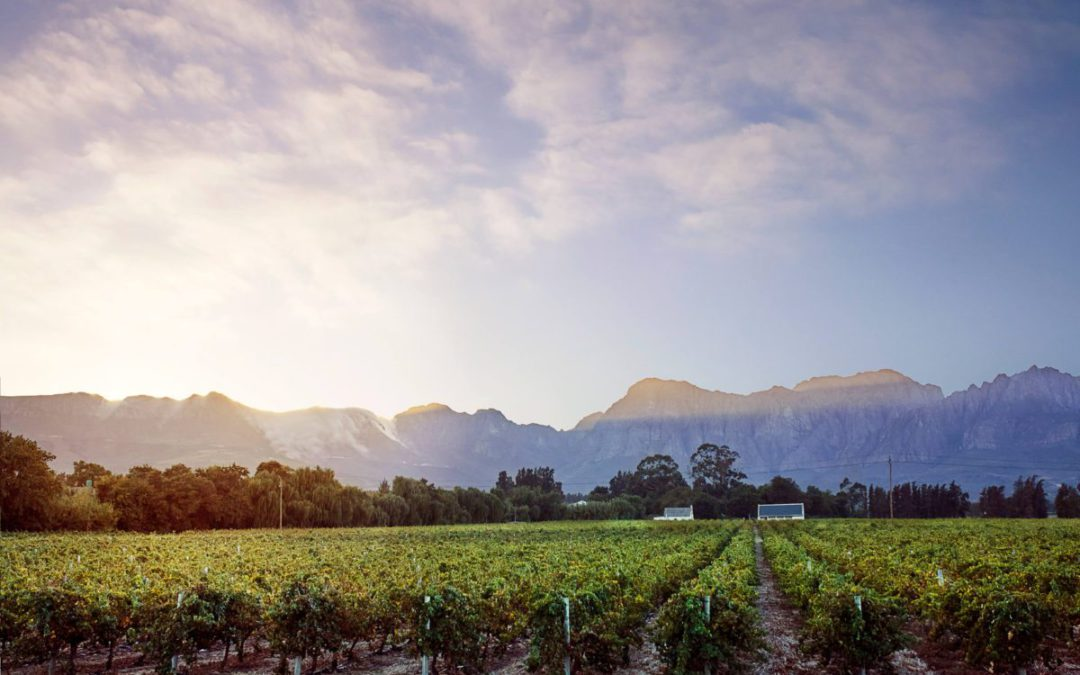 Land is not simply for the taking – Agri SA Politics Web - Thea Liebenberg