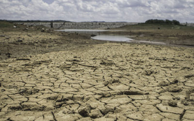 Boere in die Oos- en Noord-Kaap ook onder druk oor waterkrisis ProAgri - Benine Cronje