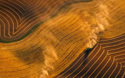 Farmers doing better, but El Niño may return Business Live - Sunita Menon