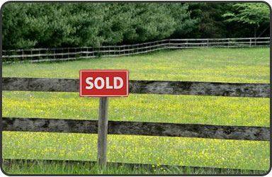 Fear of land seizures prompts major rise in farm sales The Citizen - Simnikiwe Hlatshaneni