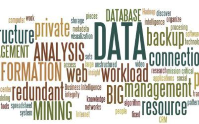 The importance of data in agriculture Farmer's Weekly - Denene Erasmus