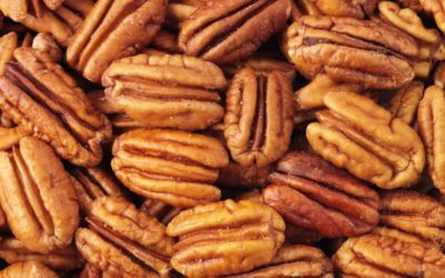 South African pecan volumes set for steep rise  Fresh Plaza - Carolize Jansen
