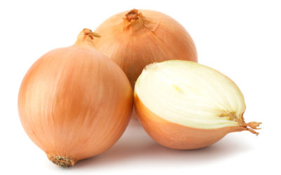 We need higher onion prices to stay on our farms Carolize Jansen - Fresh Plaza