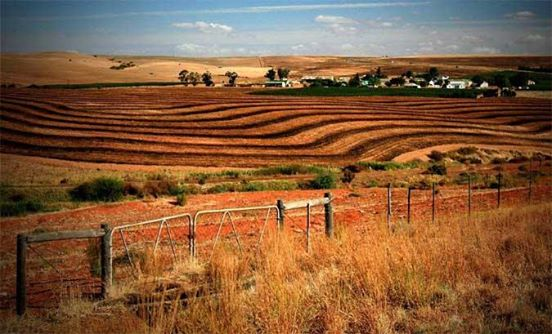 Unused land is main target of SA's expropriation plan Money Web - Ed Stoddard