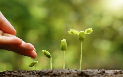 AIU secures R150m Cape agribusiness investment Shared via www.bizcommunity.com