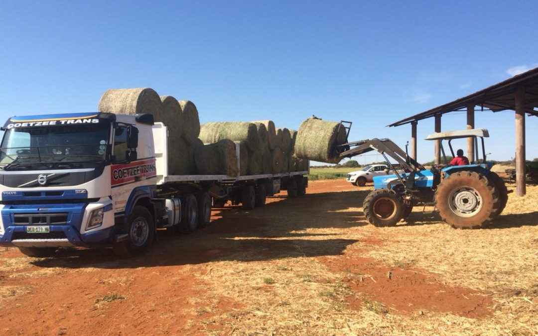 Agri Northern Cape delivers lucerne at Warrenton Henning Myburgh - Chief: Executive Manager
